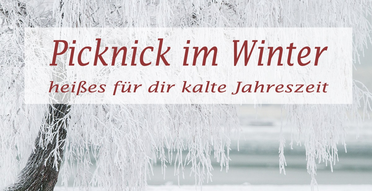 Picknick im Winter – ab in den Schnee