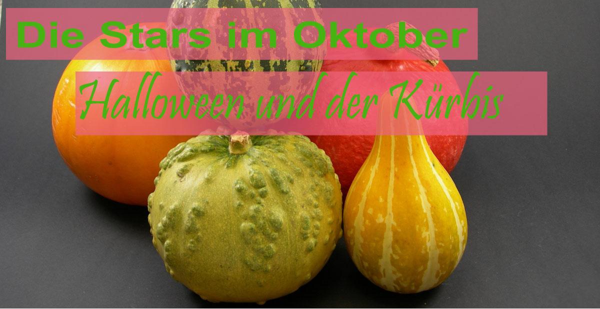Oktober: Hallewoon und Kürbis - die Stars des Monats