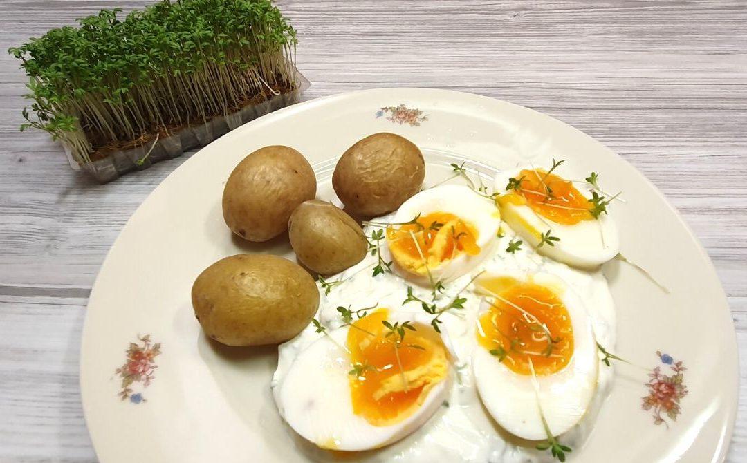 Ei mit Kräuterquark und Pellkartoffeln – schnelles Rezept