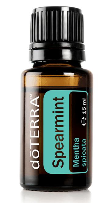 Spearmint - ätherisches Öl der grünen Minze