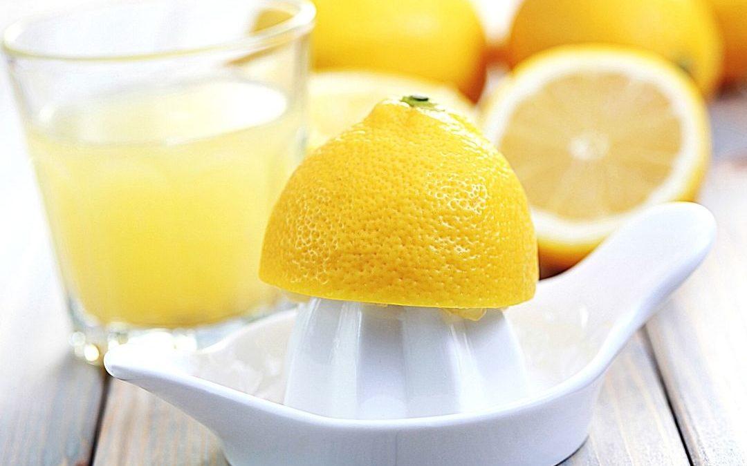 Die Zitronenpresse – beliebte Modelle im Vergleich