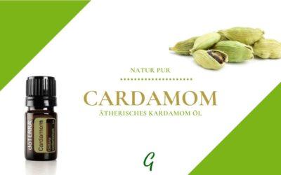 Cardamom – ätherisches Kardamom Öl
