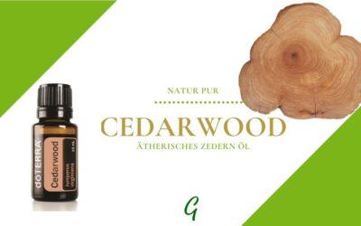 Cedarwood – ätherisches Öl der Zeder
