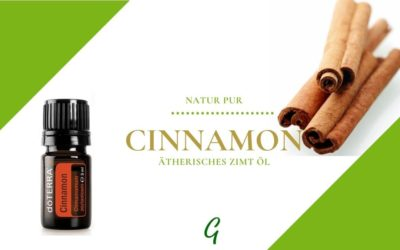Cinamon – ätherisches Zimtöl