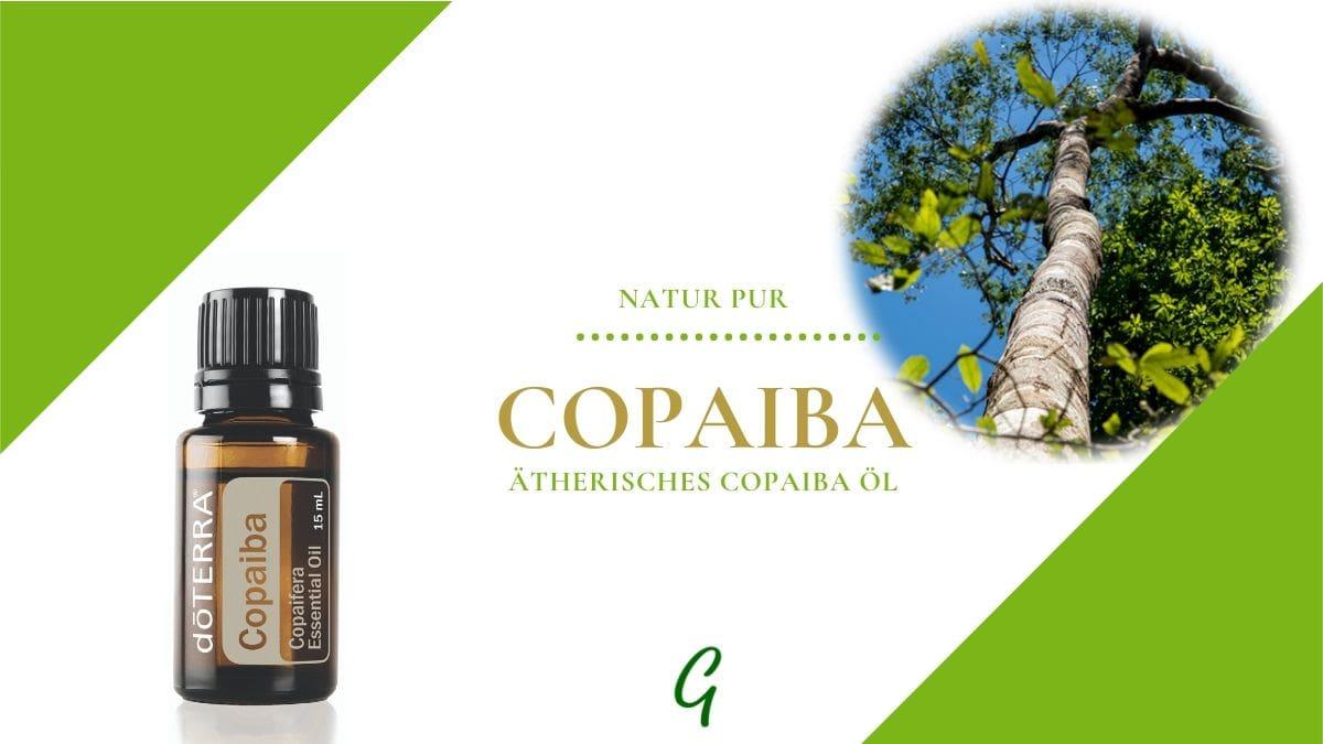 Copaiba - ätherisches Kopaiva Öl