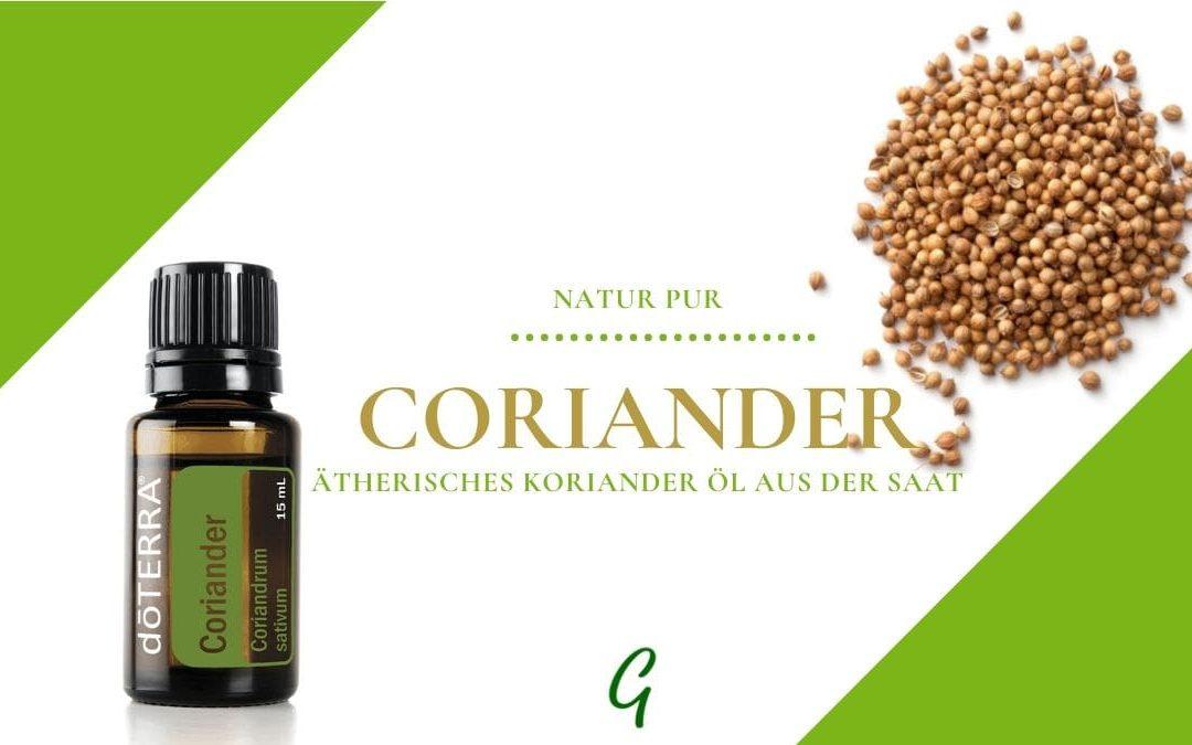 ätherisches Korianderöl aus dem Samen