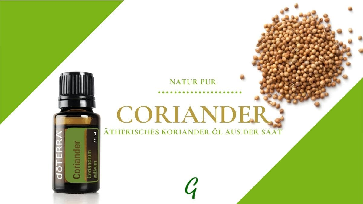 ätherisches Coriander Öl von doTERRA