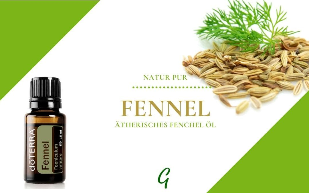 Fennel – ätherisches Fenchel Öl