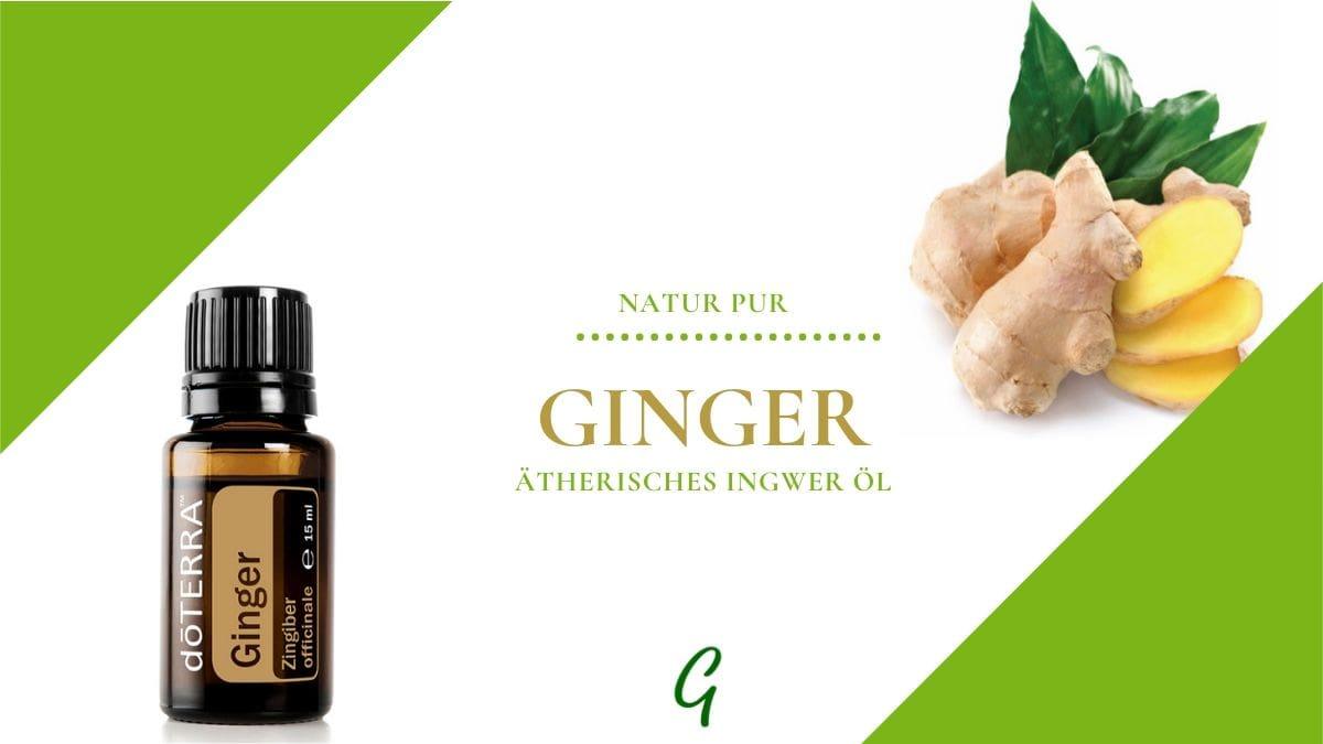ätherisches Ginger Öl von doTERRA
