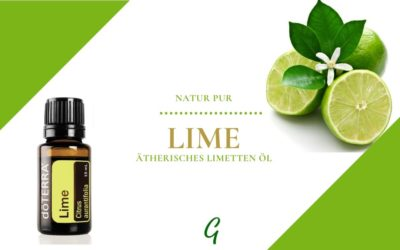 Lime – ätherisches Limettenöl