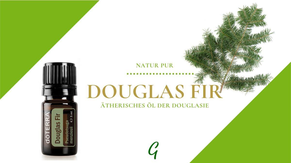 Douglas Fir - ätherisches doTERRA Öl der Douglas Tanne
