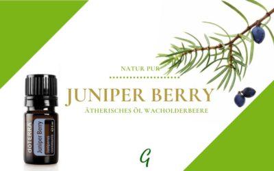 Juniper Berry – das ätherische Öl der Wachorlderbeere