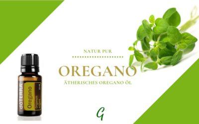 ätherisches Oregano Öl