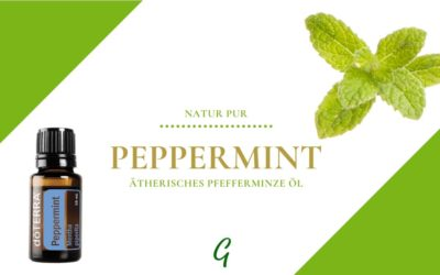 Peppermint – ätherisches Pfefferminz Öl