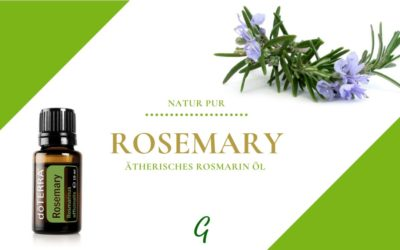 Rosemary – ätherisches Rosmarin Öl