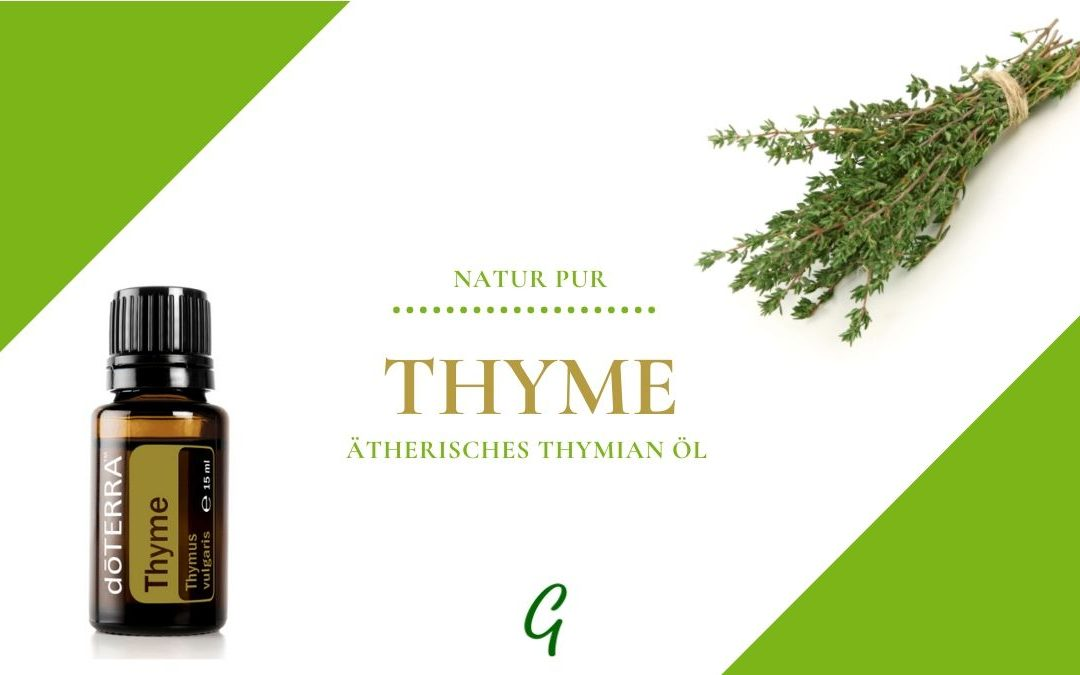 Thyme – ätherisches Thymian Öl