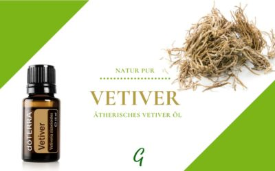 ätherisches Vetiver Öl