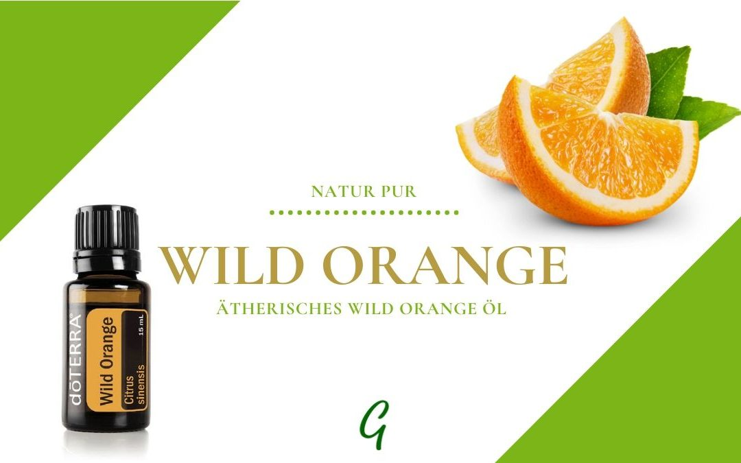 Wild Orange – das ätherisches Öl der Wilden Orange