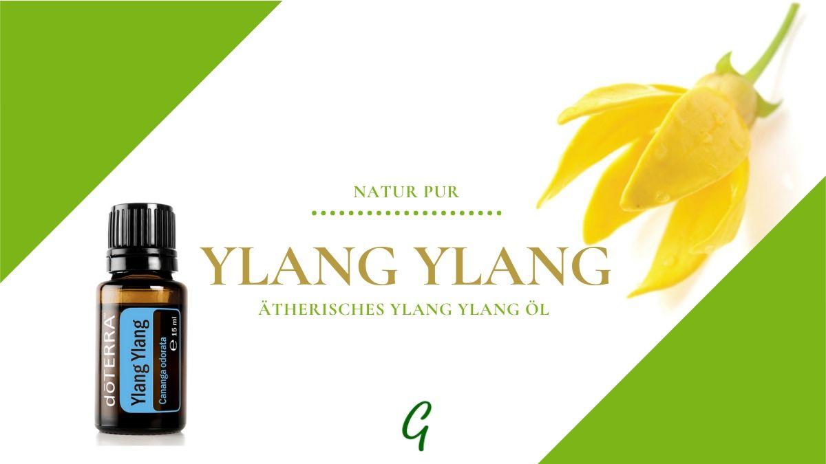 ätherisches Ylang Ylang Öl