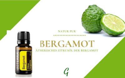 Bergamot – ätherisches Öl der Bergamotte